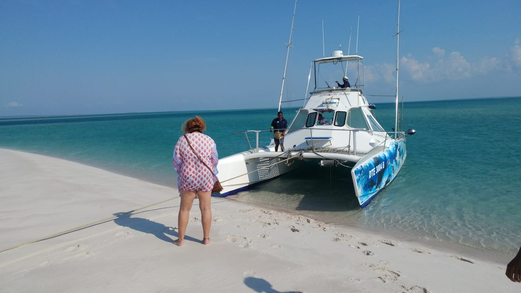 Catamaran trip to sandbank