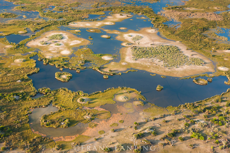 Aerial view of islands, termite mounds and waterways, Okavango delta, Botswana